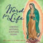 Luminous Mysteries Rosary CD